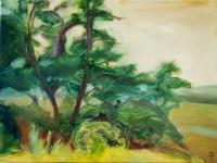 Tánc a természetben  - 2004 olaj, vászon, 45x60 cm